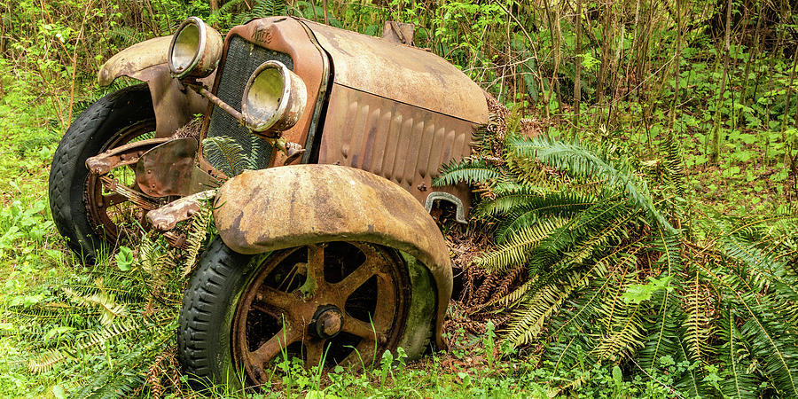 Old Logging Equipment-2 by Claude Dalley