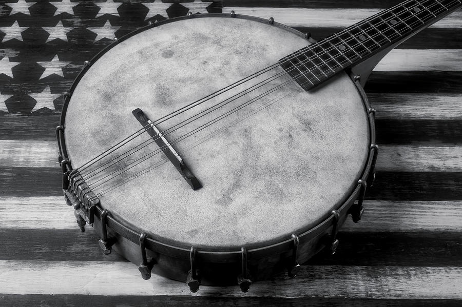 American Photograph - Old Mandolin Banjo In Black And White by Garry Gay