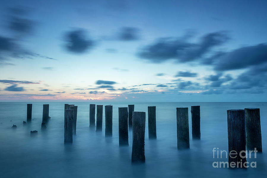Old Pier Pilings by Brian Jannsen