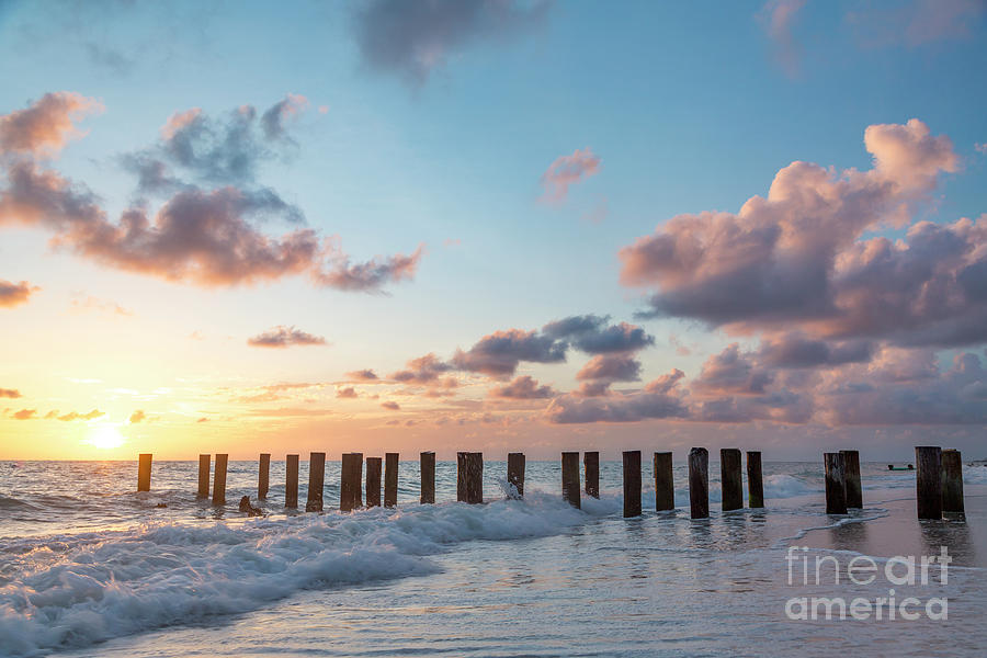 Old Pier Pilings II by Brian Jannsen