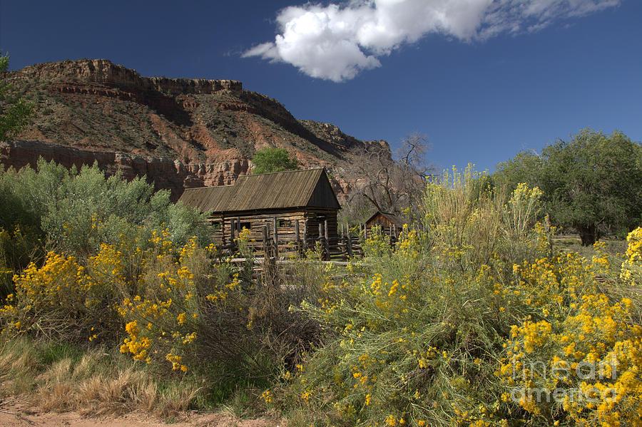 Old Pioneer Barn by Cynthia Mask