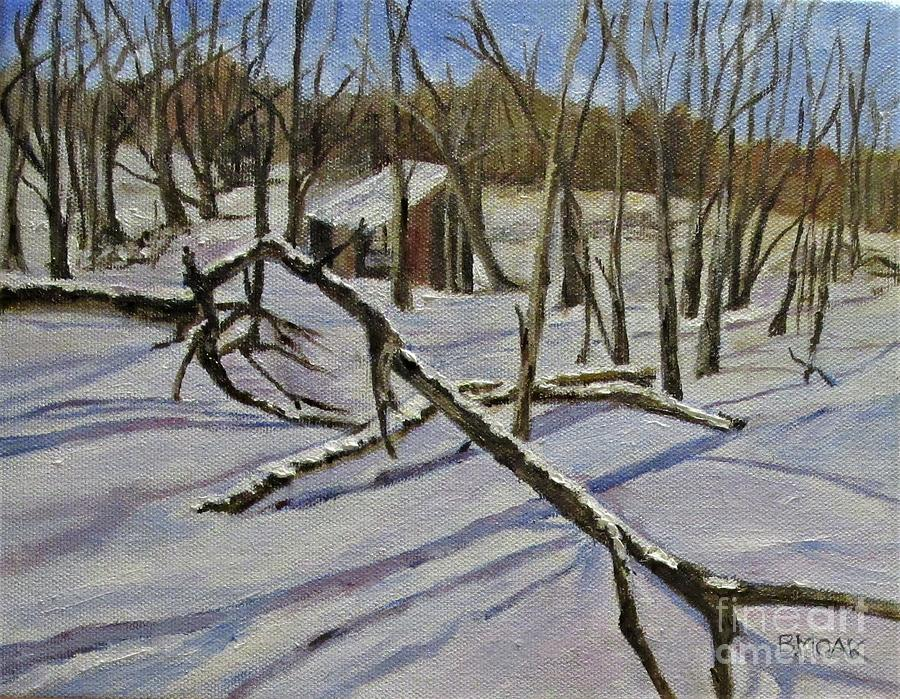 Impressionistic Painting - Old Privy In New Scotland Ny by Barbara Moak