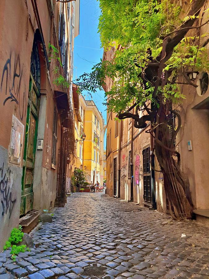 Old Rome Street by Andrea Whitaker
