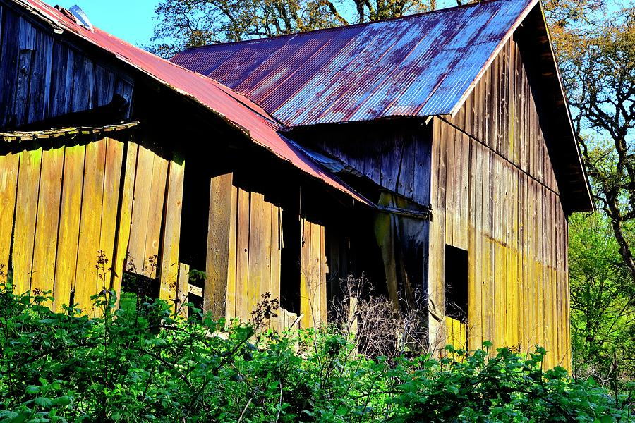 Old Shed Barn Photograph
