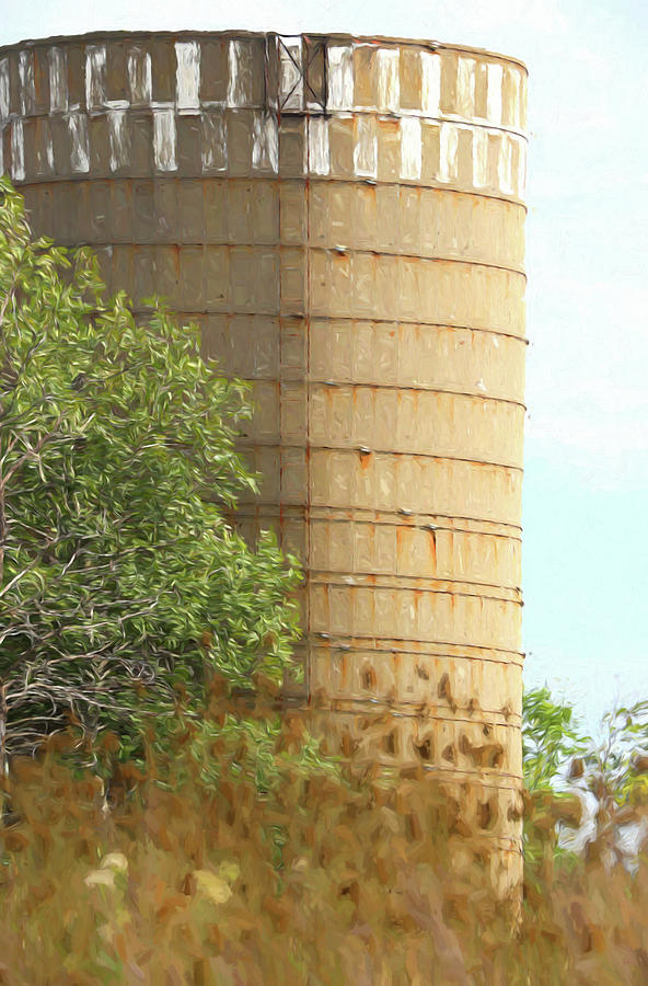 Silo Photograph - Old Silo by Mary Bedy