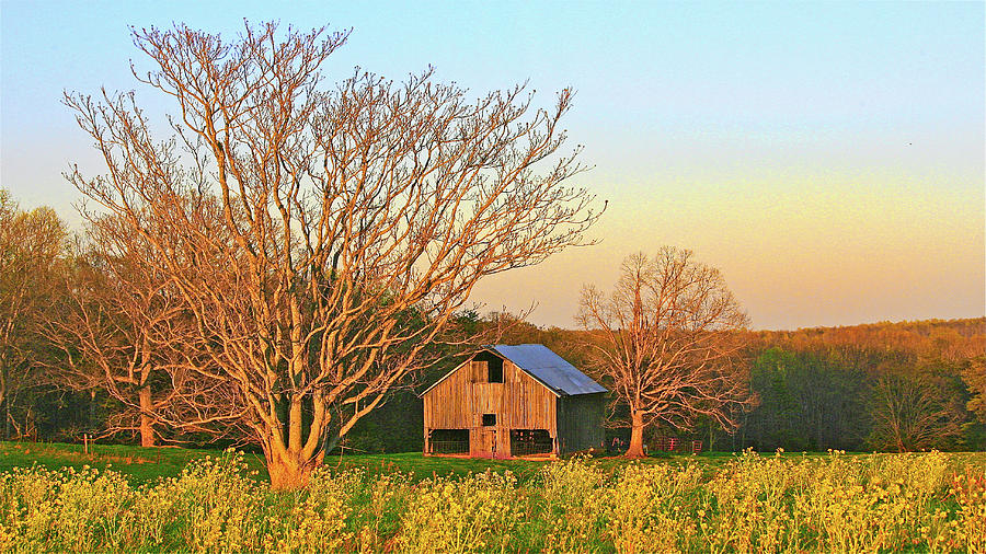 Old Smith Mountain Lake Barn - Spring Time Sunset by James B Roney