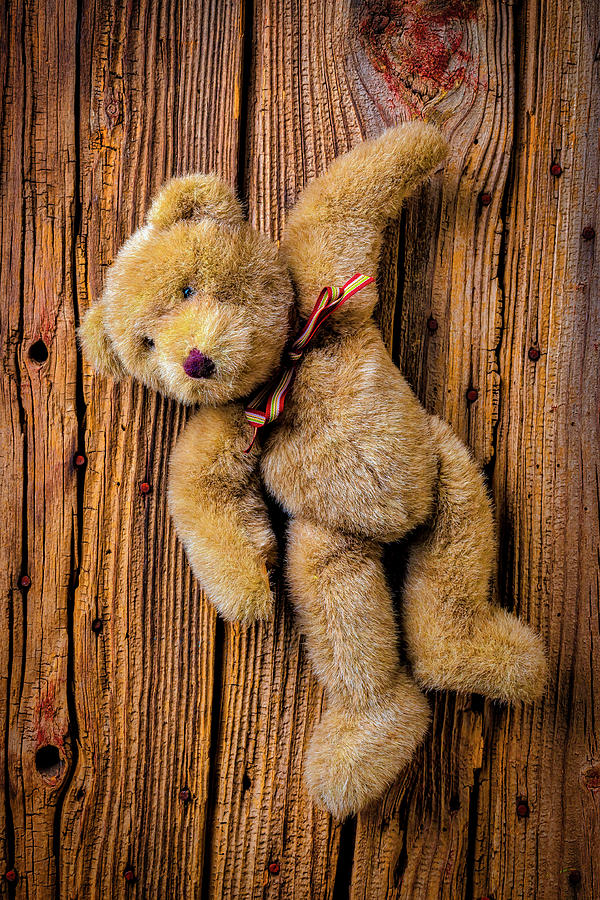 Teddy Photograph - Old Teddy Bear Hanging On The Door by Garry Gay