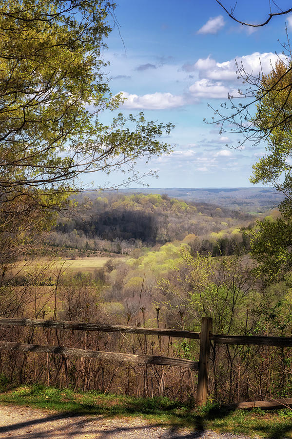 Old Trace Drive View by Susan Rissi Tregoning
