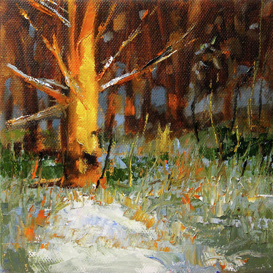 Old Tree in the Forest by Nancy Merkle
