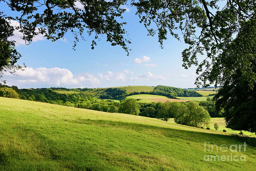 Old Winchester Hill Photograph