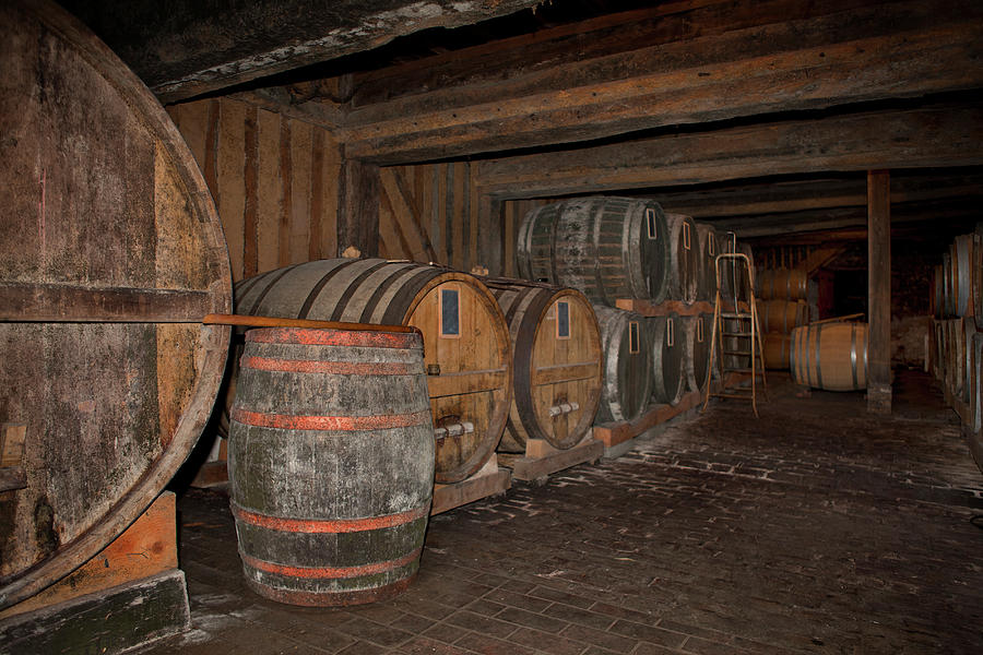 Old Wine Cellar With Wooden Barrels Photograph by Studio Box