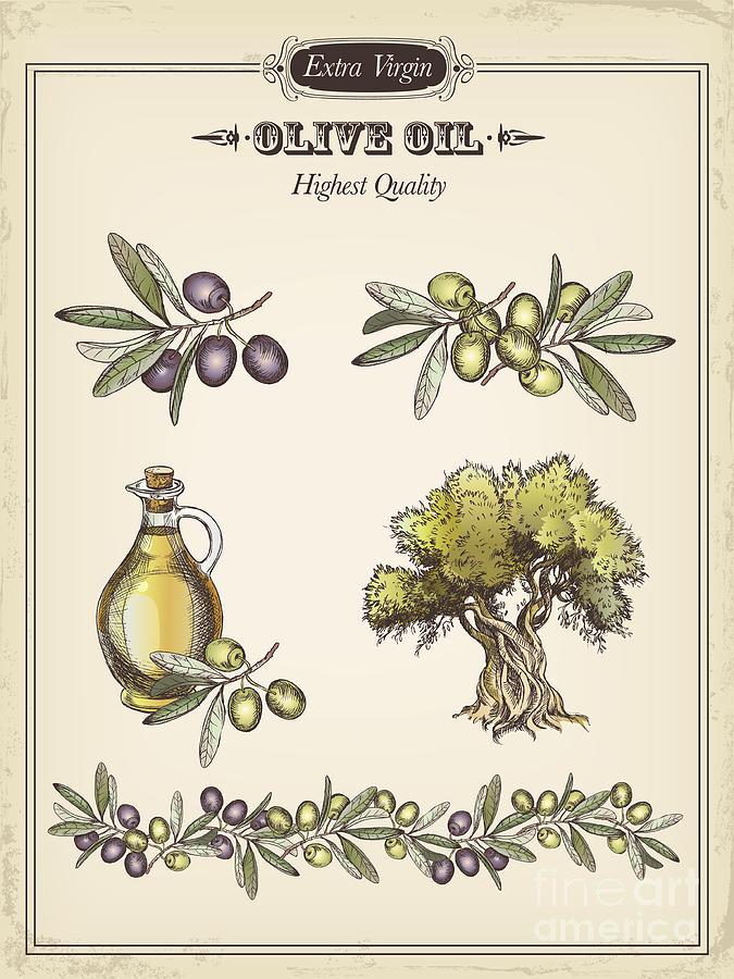 Olive Digital Art by Tatarnikova