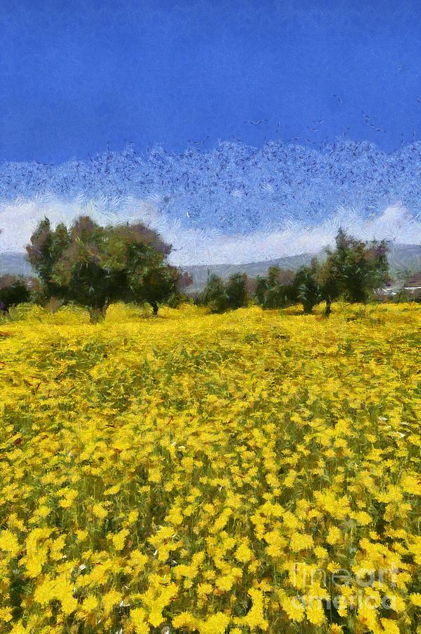 Olive trees and daisies II by George Atsametakis