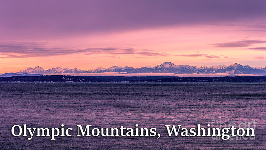 Olympic Mountains Photograph - Olympic Mountains, Washington by G Matthew Laughton