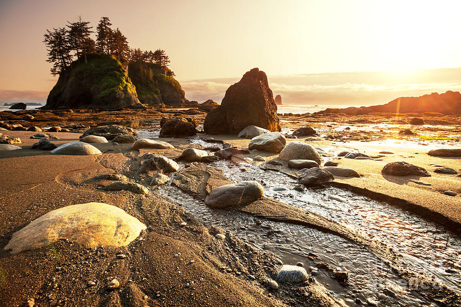 Olympic Photograph - Olympic National Park Landscapes by Galyna Andrushko