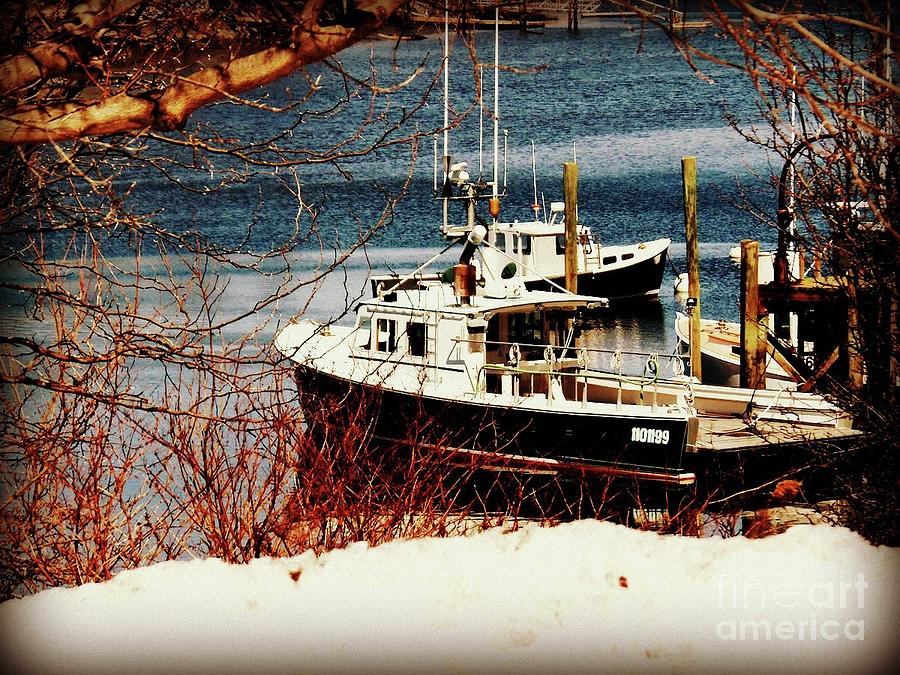 Boat Photograph - On The Cold Shore Of Goat Hill by Lita Kelley