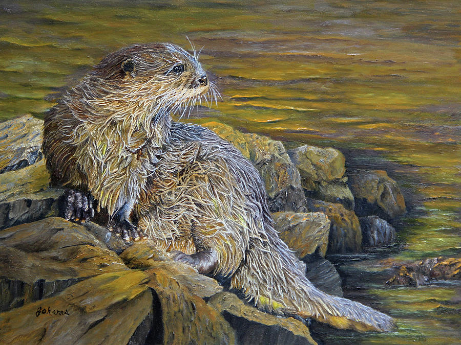 On The River Bank - River Otter by Johanna Lerwick