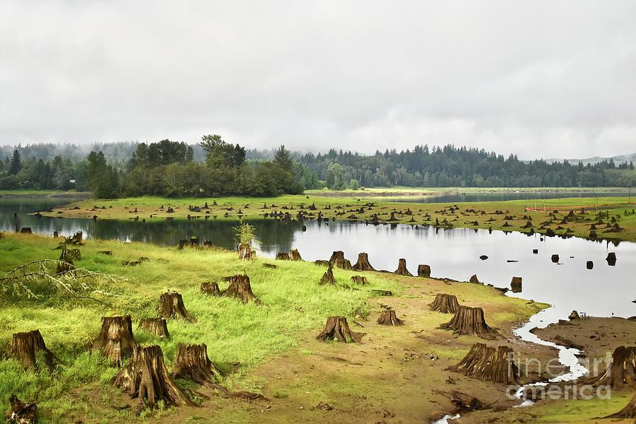 Adler Lake Park, Washington Photograph