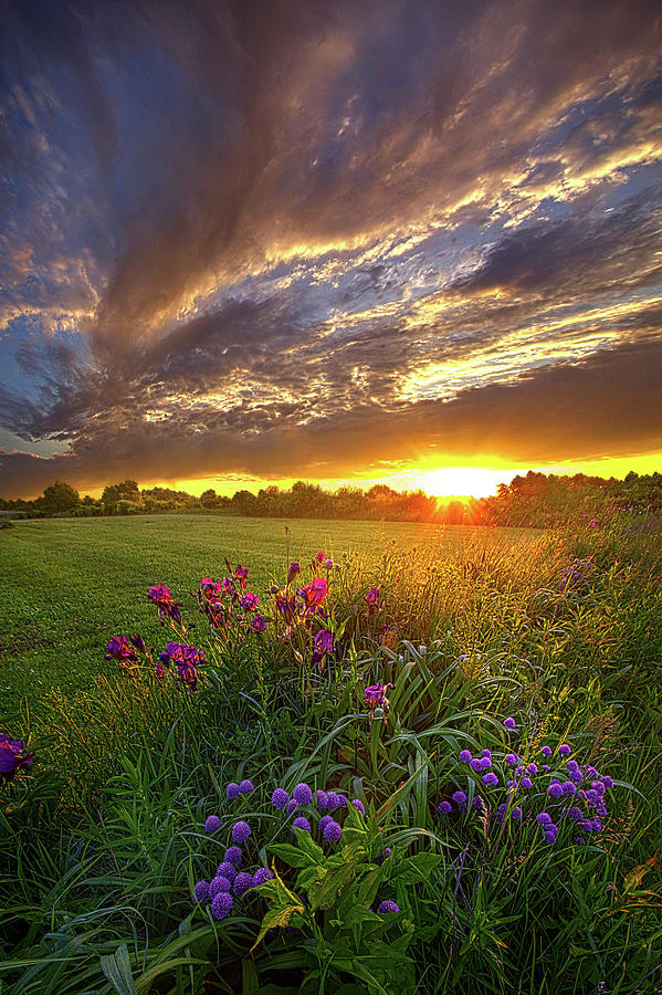 Life Photograph - On Your Prayers Up In The Sky by Phil Koch