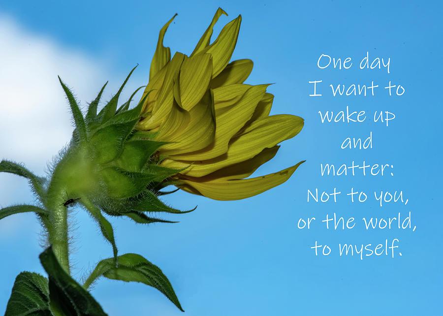 One Day by Cathy Kovarik