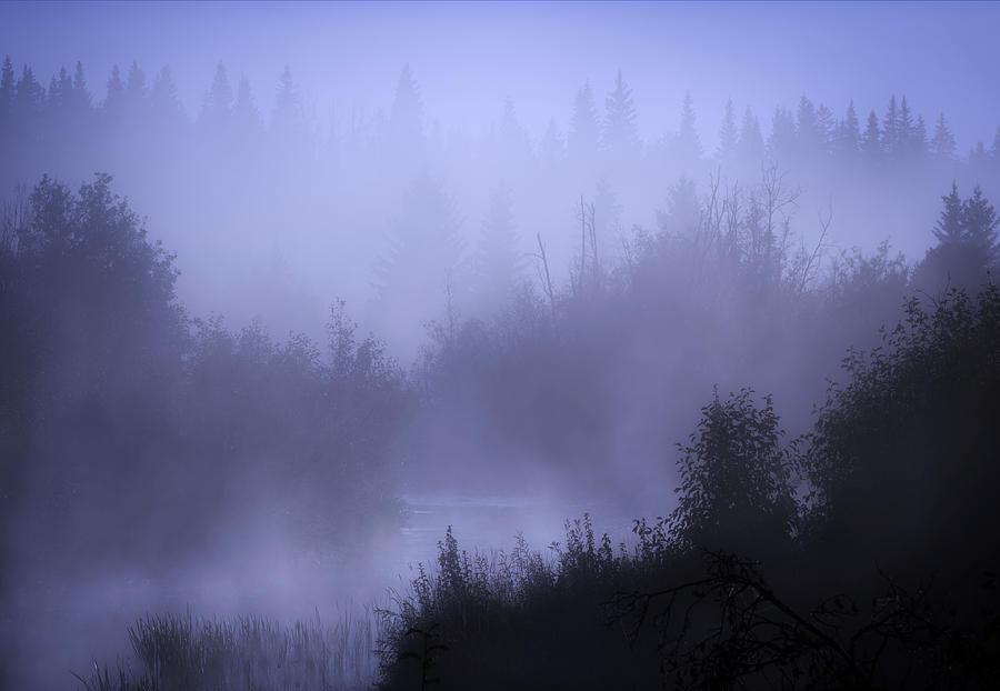 One Foggy Morning... by Dan Jurak