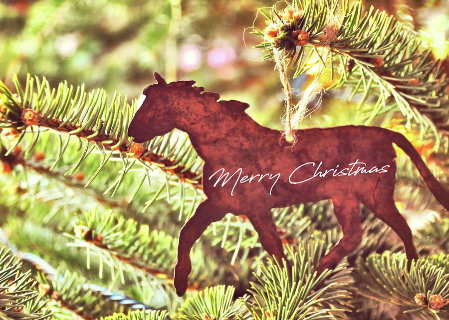 ONE HORSE OPEN SLEIGH quote by Jamart Photography