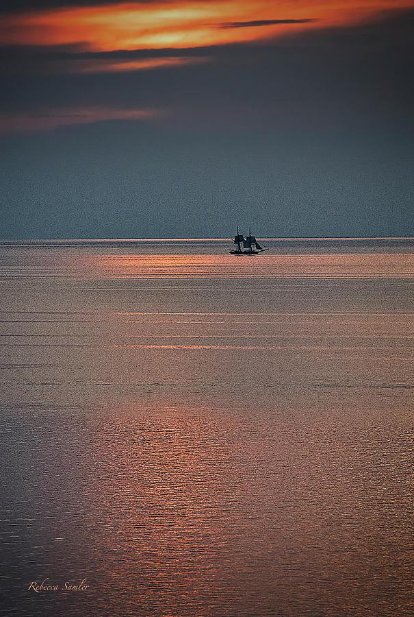 One More Trip Around the Sun by Rebecca Samler