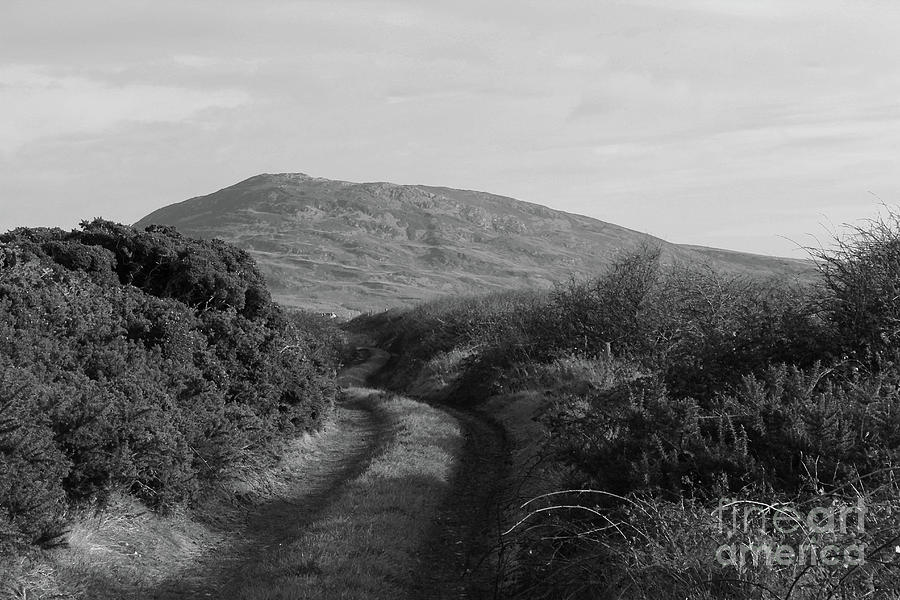One Way In bw Donegal by Eddie Barron