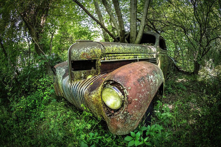 One with Nature Vintage Truck by Debra and Dave Vanderlaan