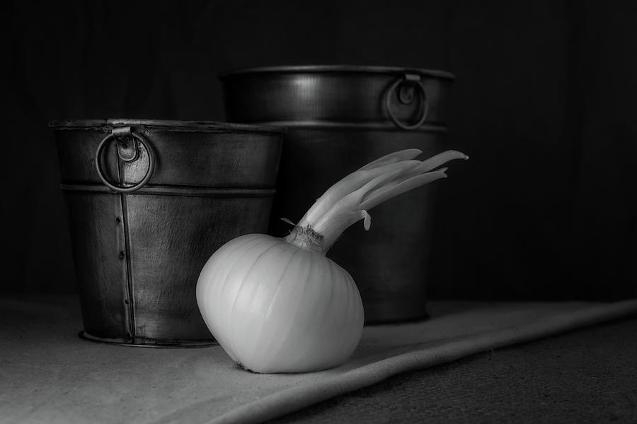 Onion Photograph - Onion In Black And White by Tom Mc Nemar