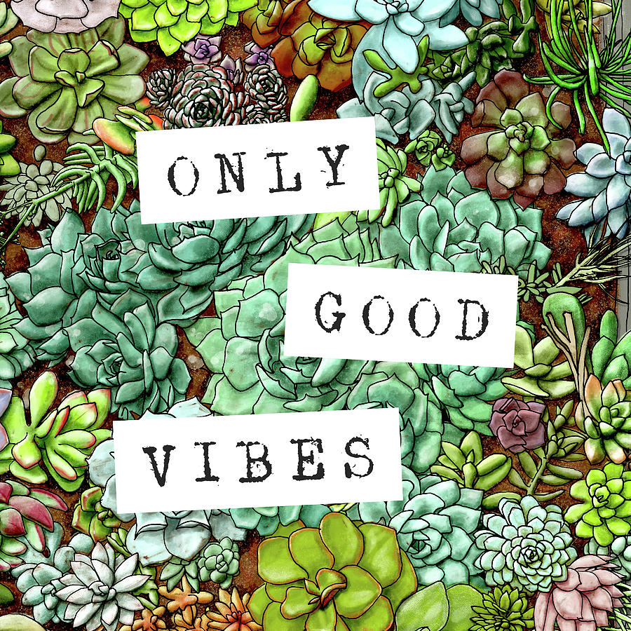 Only Good Vibes Succulent Art by Jen Montgomery by Jen Montgomery