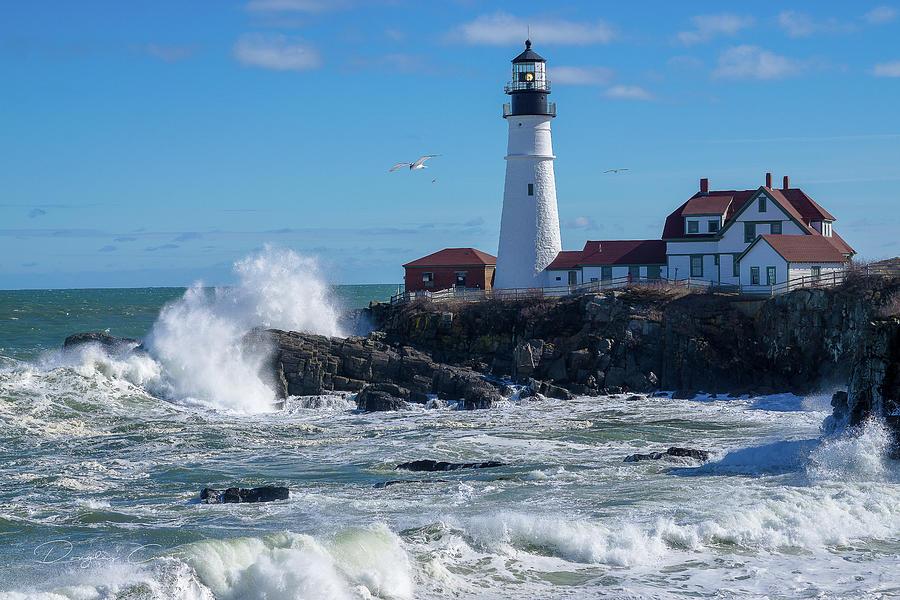 Portland Photograph - Maine Beauty by Douglas Curtis Photography