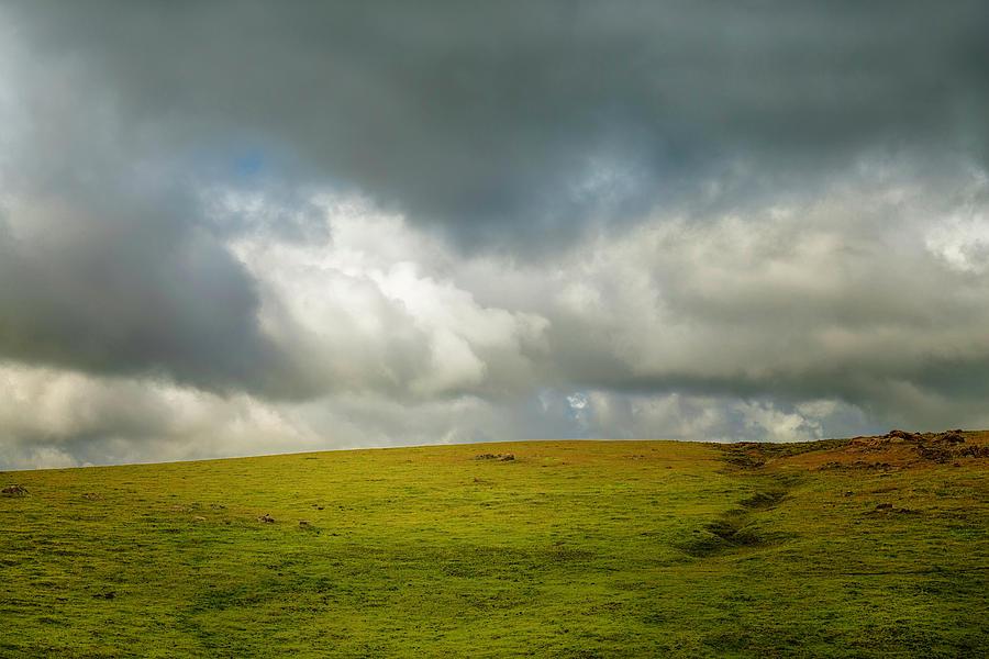 Open Meadow by Joseph Smith