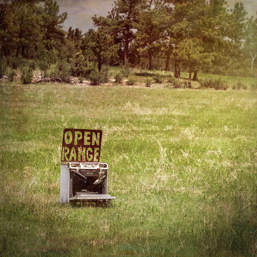 Open Range by Joan Carroll