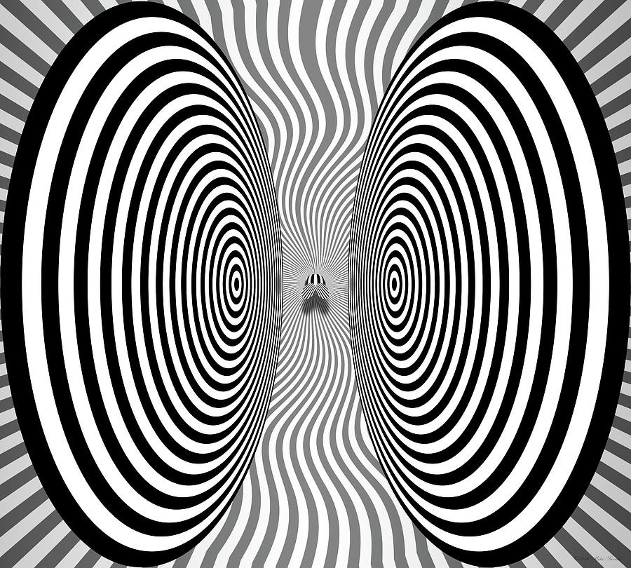 Optical Illusion - Bothersome Fly by Mike Savad