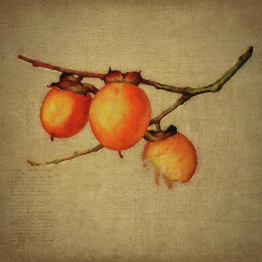 Orange berries by Jan Keteleer
