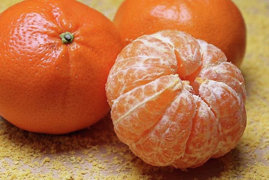 Orange Delish Photograph