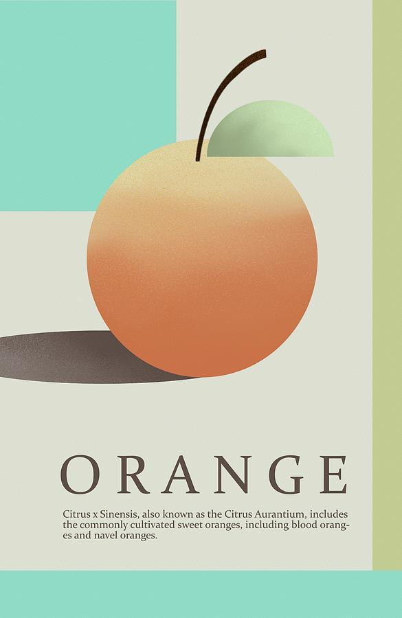 Orange by Joe Gilronan