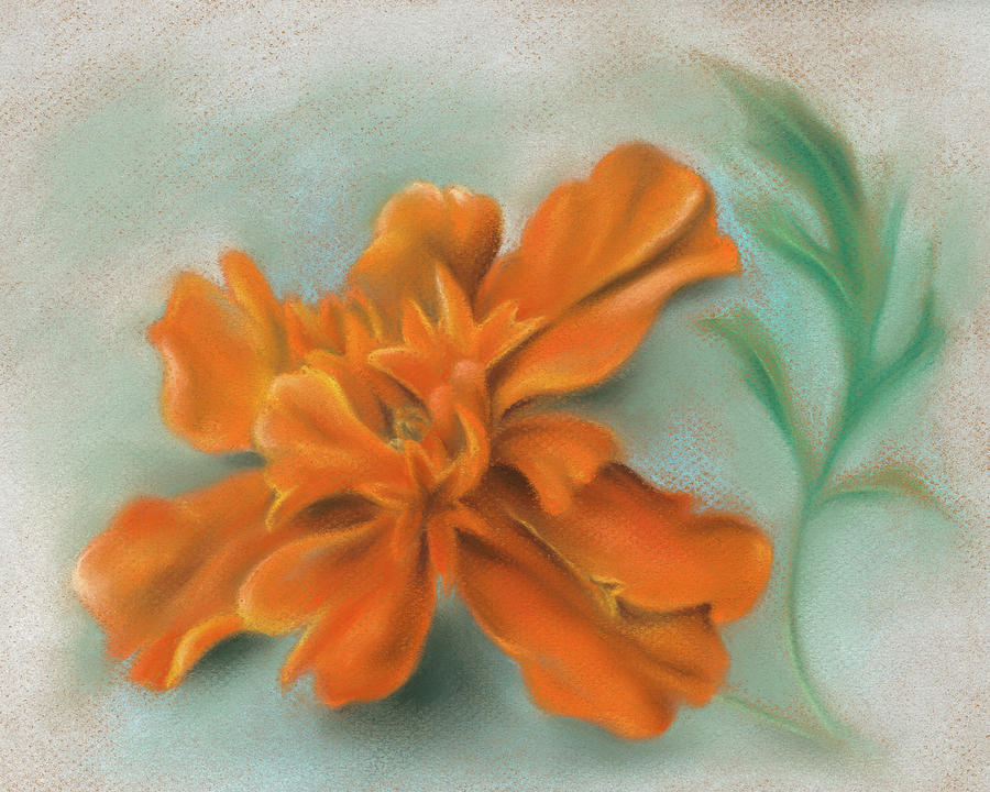 Orange Marigold and Leaf by MM Anderson