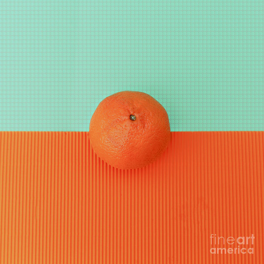 Fancy Photograph - Orange On Bright Background Minimalism by Evgeniya Porechenskaya