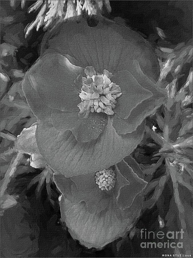 Orange Red Begonias Bw Digital Art