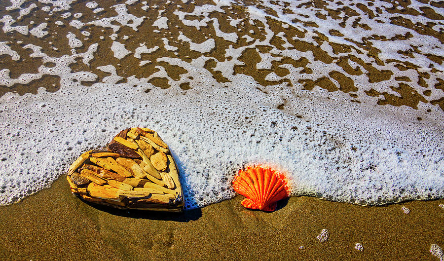 Orange Seashell And Driftwood Heart by Garry Gay