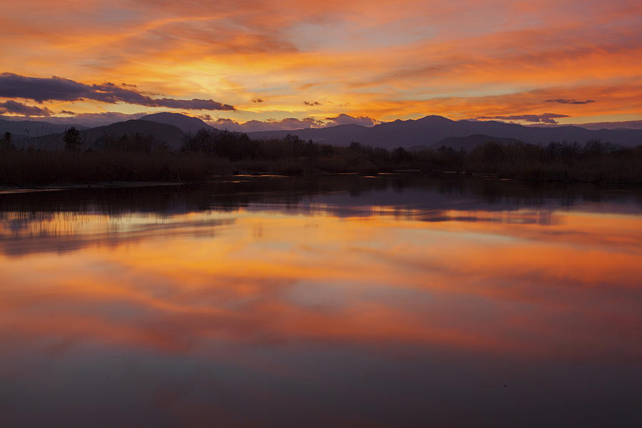 Orange sunset on the pond by Daniele Fanni