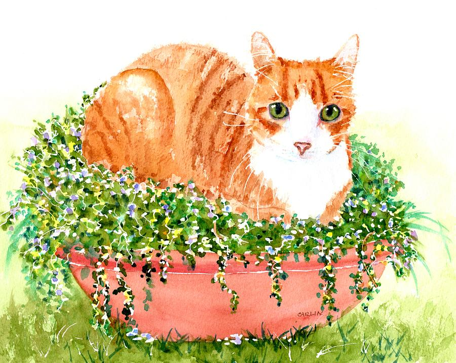 Orange Tabby Cat in Flower Pot by Carlin Blahnik CarlinArtWatercolor