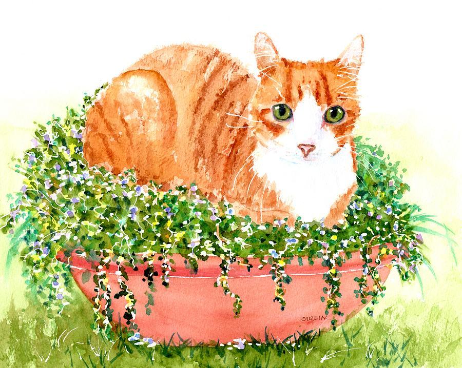 Orange Tabby Cat in Flower Pot by Carlin Blahnik CarlinArtWatercolor