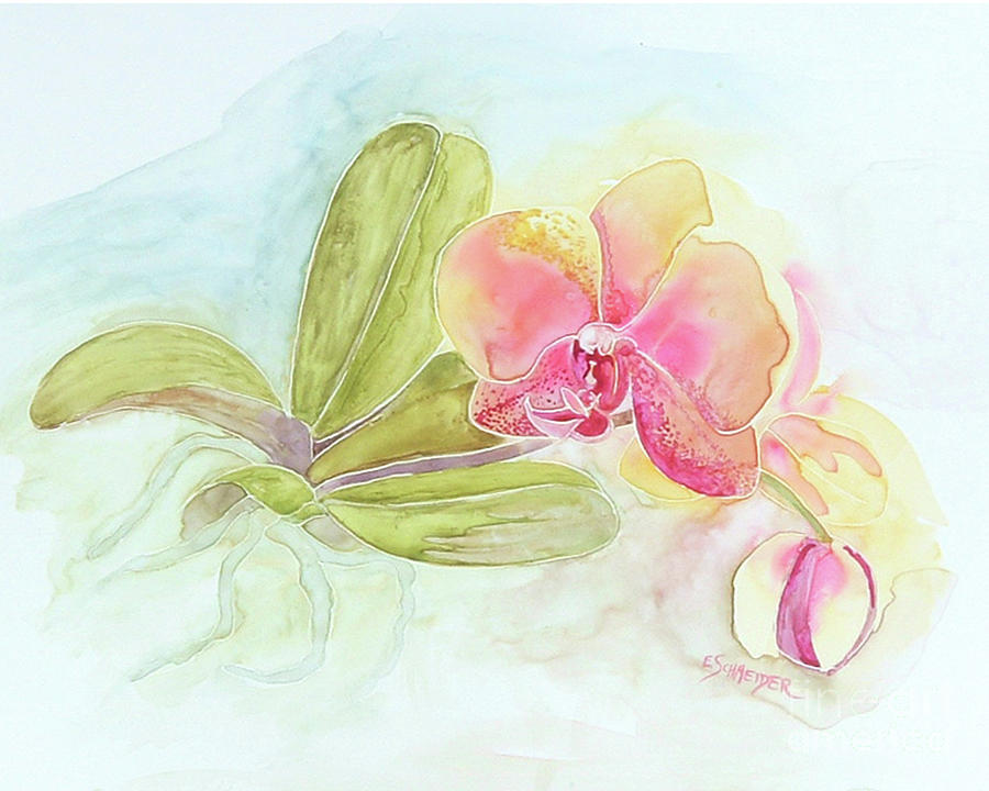 Orchid Beauty by Edie Schneider