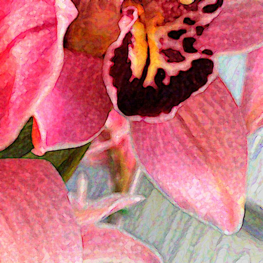Orchids Between the Lines by Darla Nyren