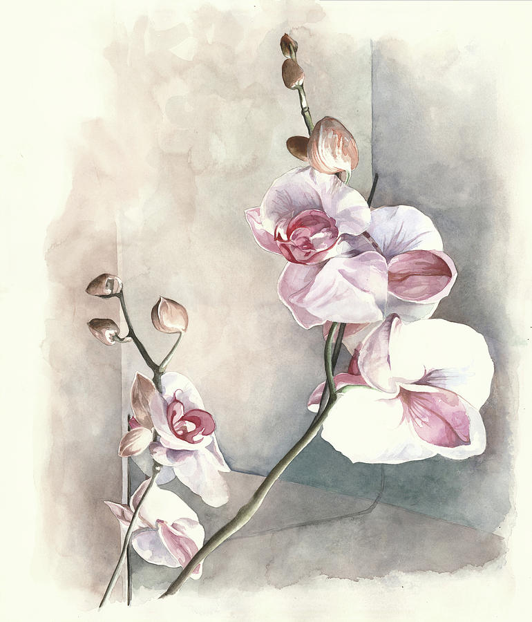 simple orchids paintings - 770×900