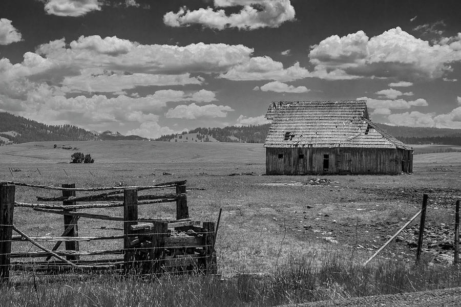 Oregon Barn in Black and White by Matthew Irvin