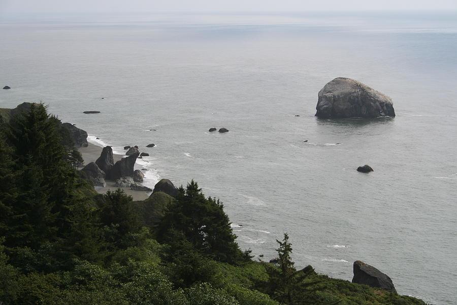 Oregon Blend by Dylan Punke